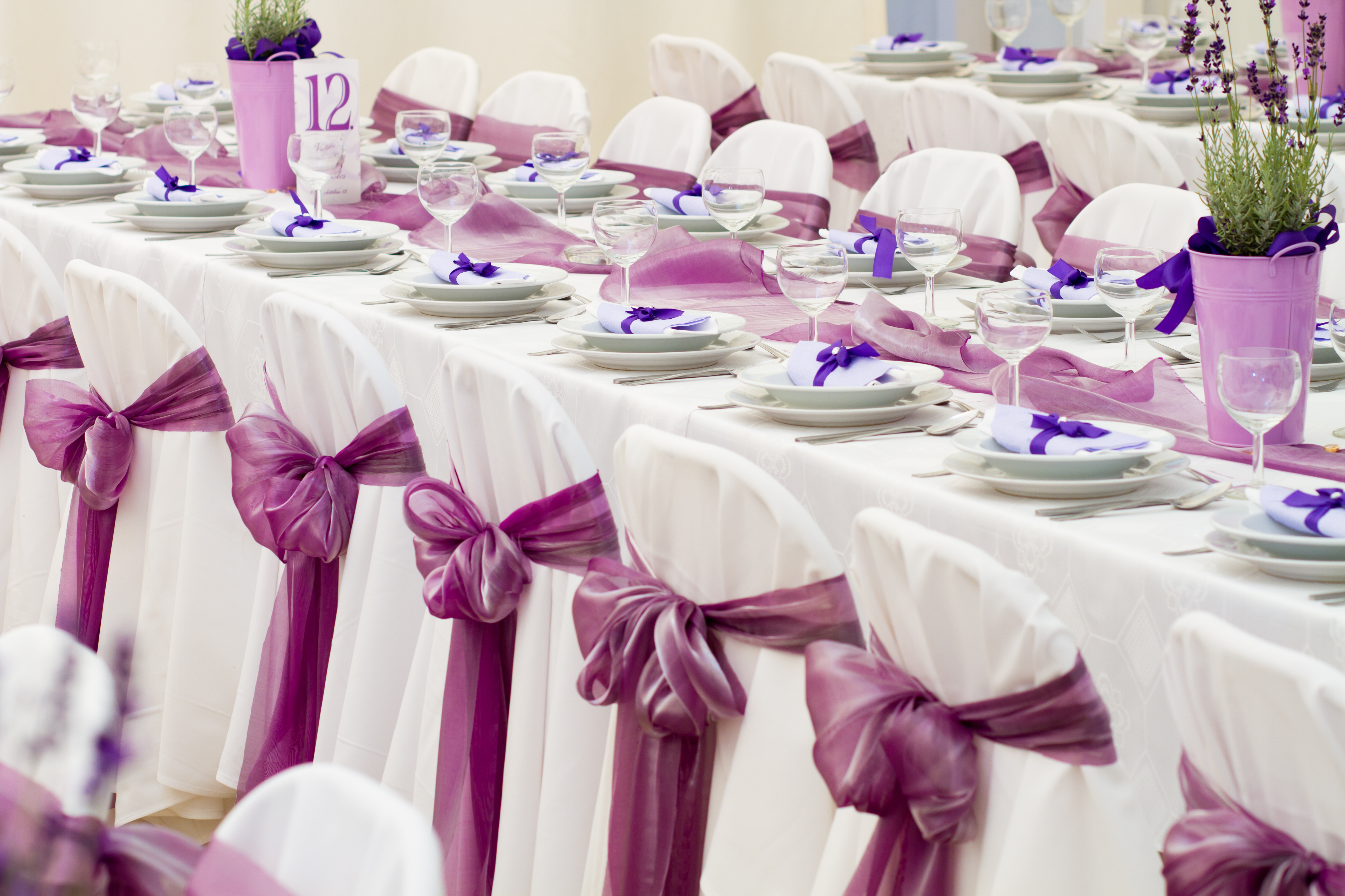 backdrop rents event rentals aaa services wedding party linen joslyn table events